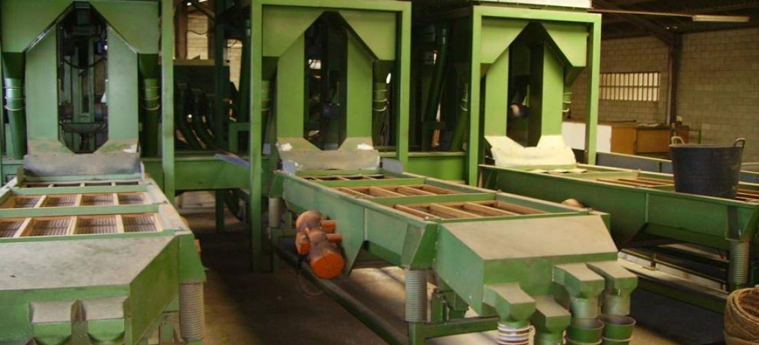 Plantas y líneas de procesado para Avellanas